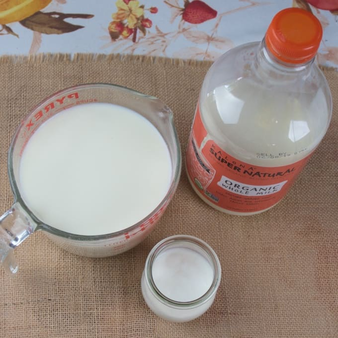 How to Make Homemade Yogurt (Stove) All the ingredients are gathered.