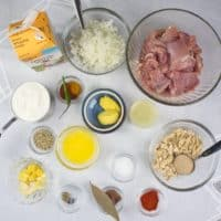 Indian Chicken Korma (Shahi Korma) ingredients all gathered before beginning cooking