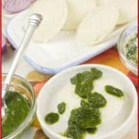 Homemade Idli Recipe Served with dribbles of cilantro chutney.