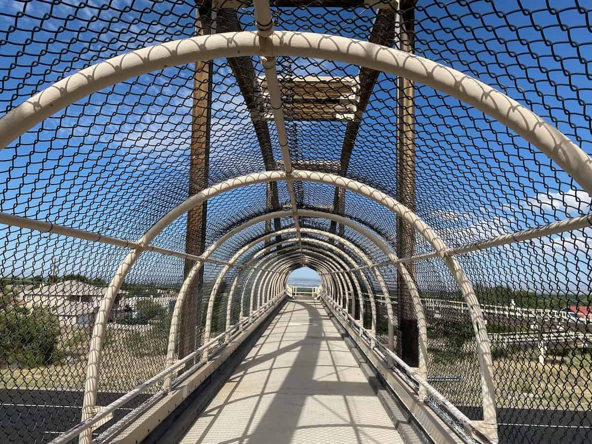 Pedestrian Bridge over Tramway Boulevard, Albuquerque, New Mexico
