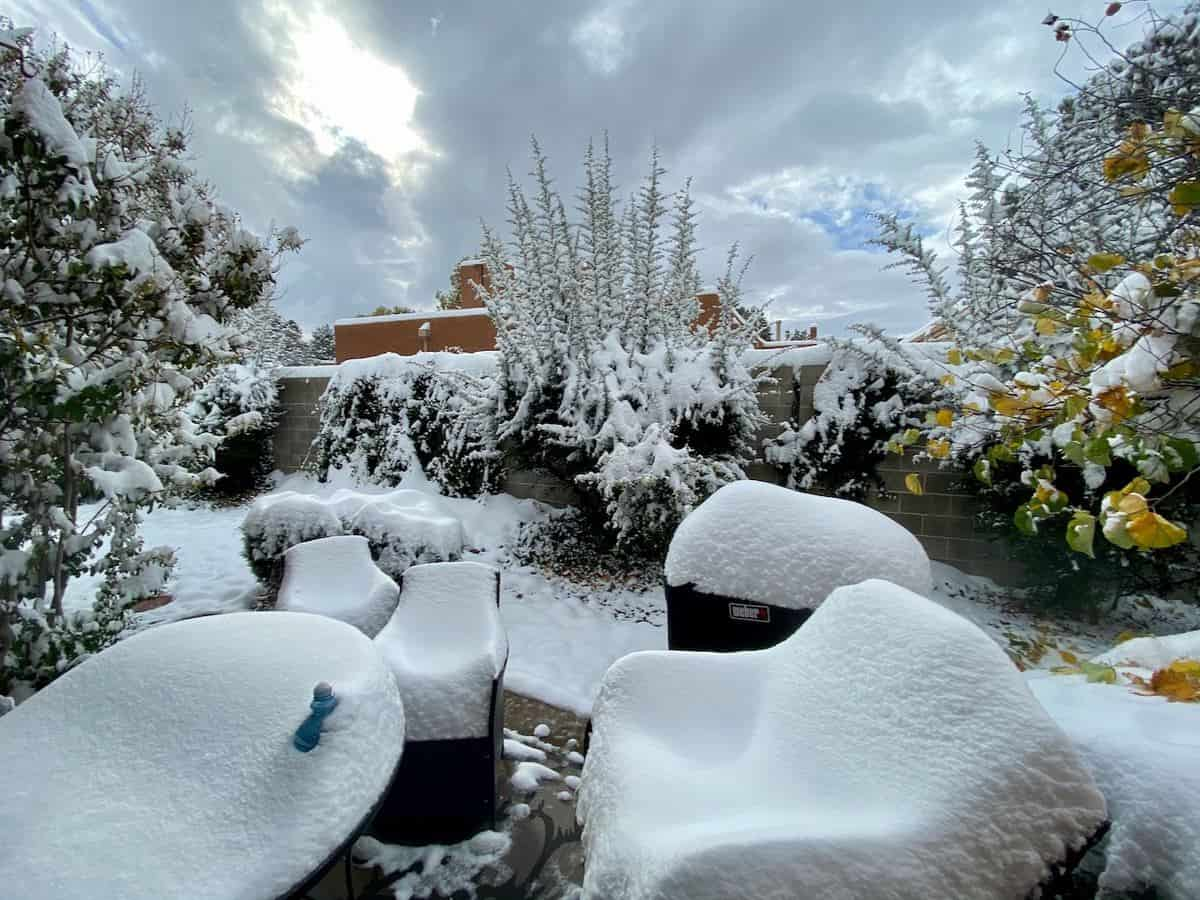 Snow in the Desert, October 26, Albuquerque, New Mexico