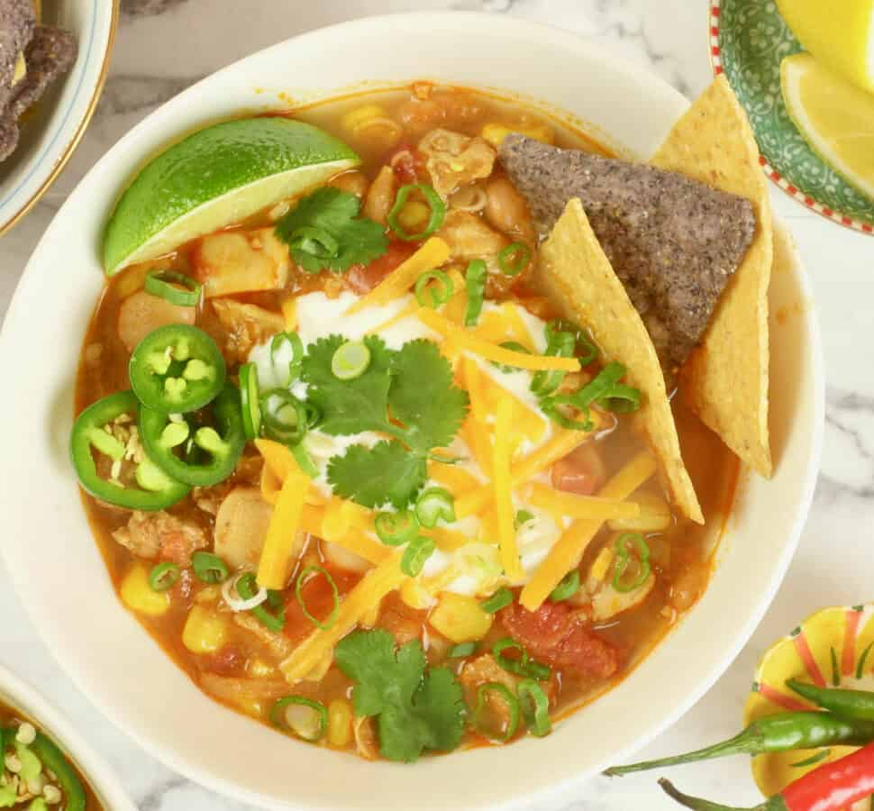 Cozy Indian Chili ~ A chicken and white bean chili (stew) garnished with tortilla chips, yogurt, chopped scallions, shredded cheese and a flurry of cilantro leaves.