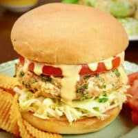 Turkey burgers served on a bun with spicy potato chips, tomato, coleslaw and special sauce.